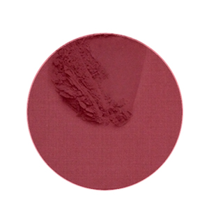 B21149.jpg Coconut Blush Persian Rose
