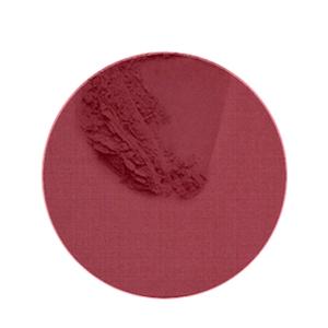 B21149.jpg Coconut Blush Persian Rose